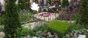 Как подбирать растения для цветников